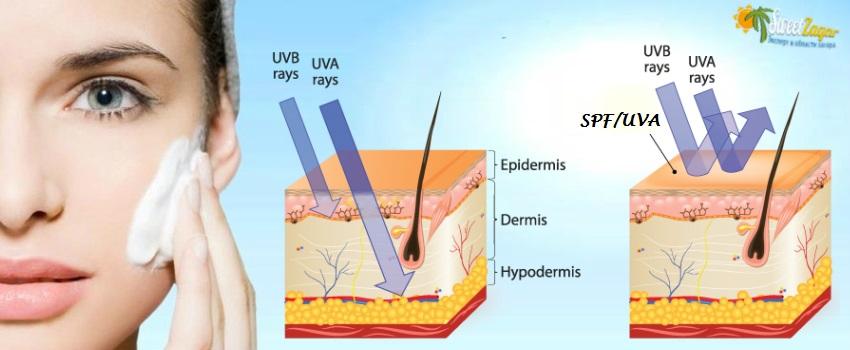 Крема с защитой от UVA - предотвращают фотостарение